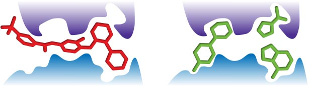 Image obtained from Advances in Fragment-Based Drug Discovery by Laura Elizabeth Mason